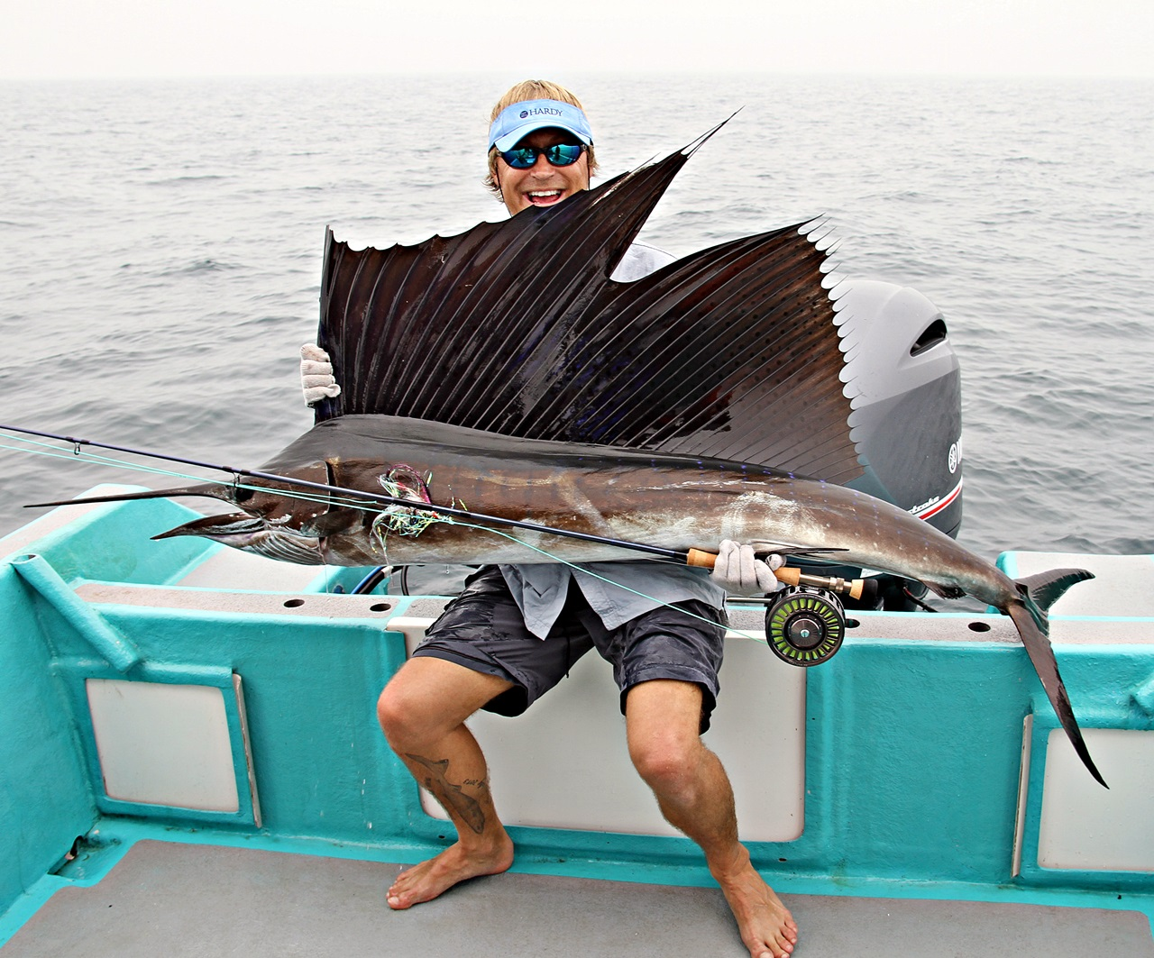 Sailfish landet