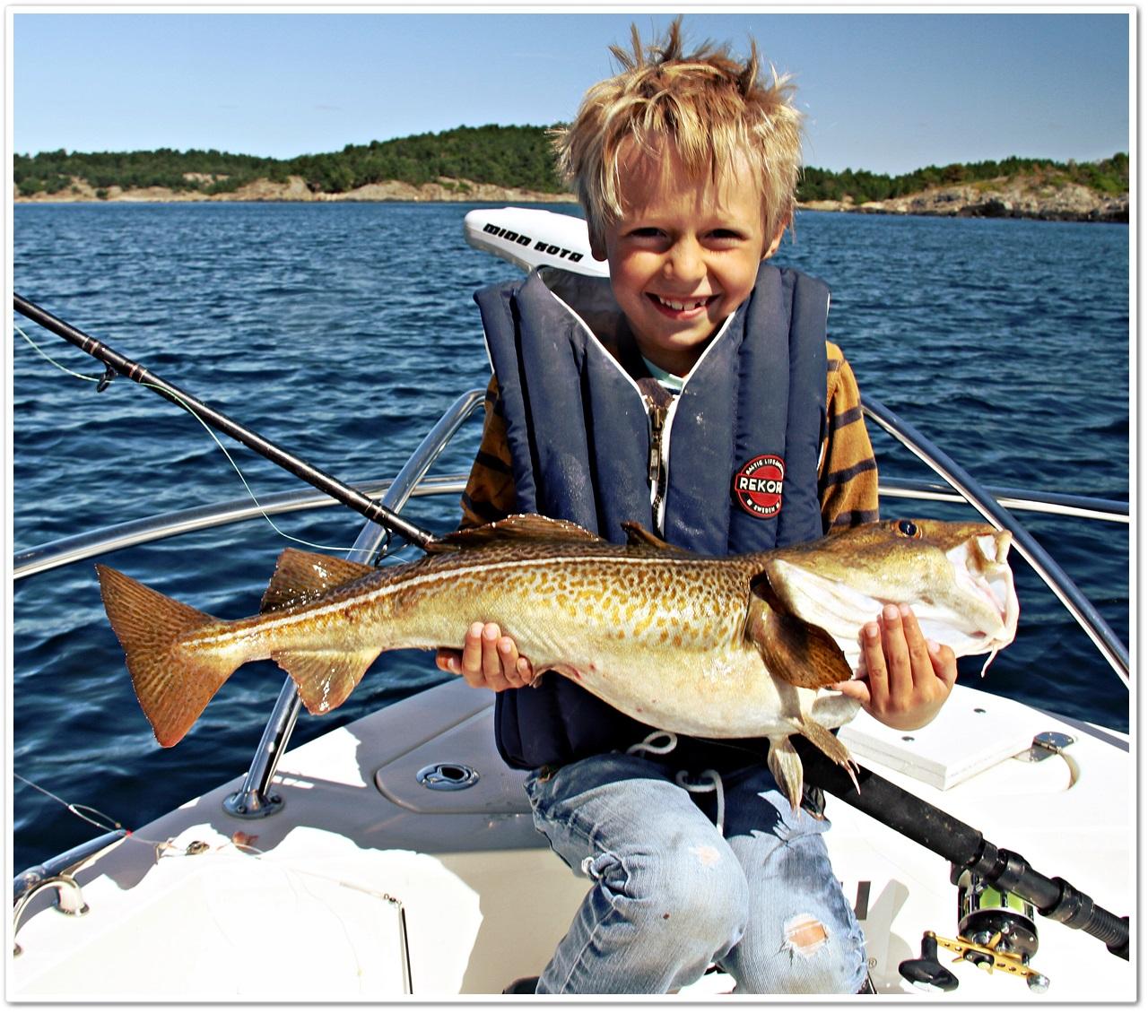 vi bruker el motoren på nesten alt av fiske
