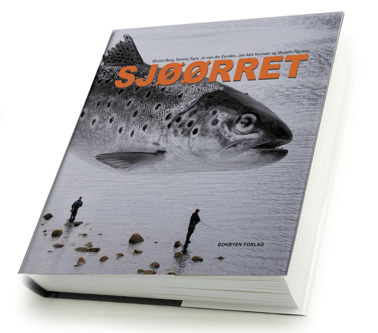 SJØØRRET_bokdummy2