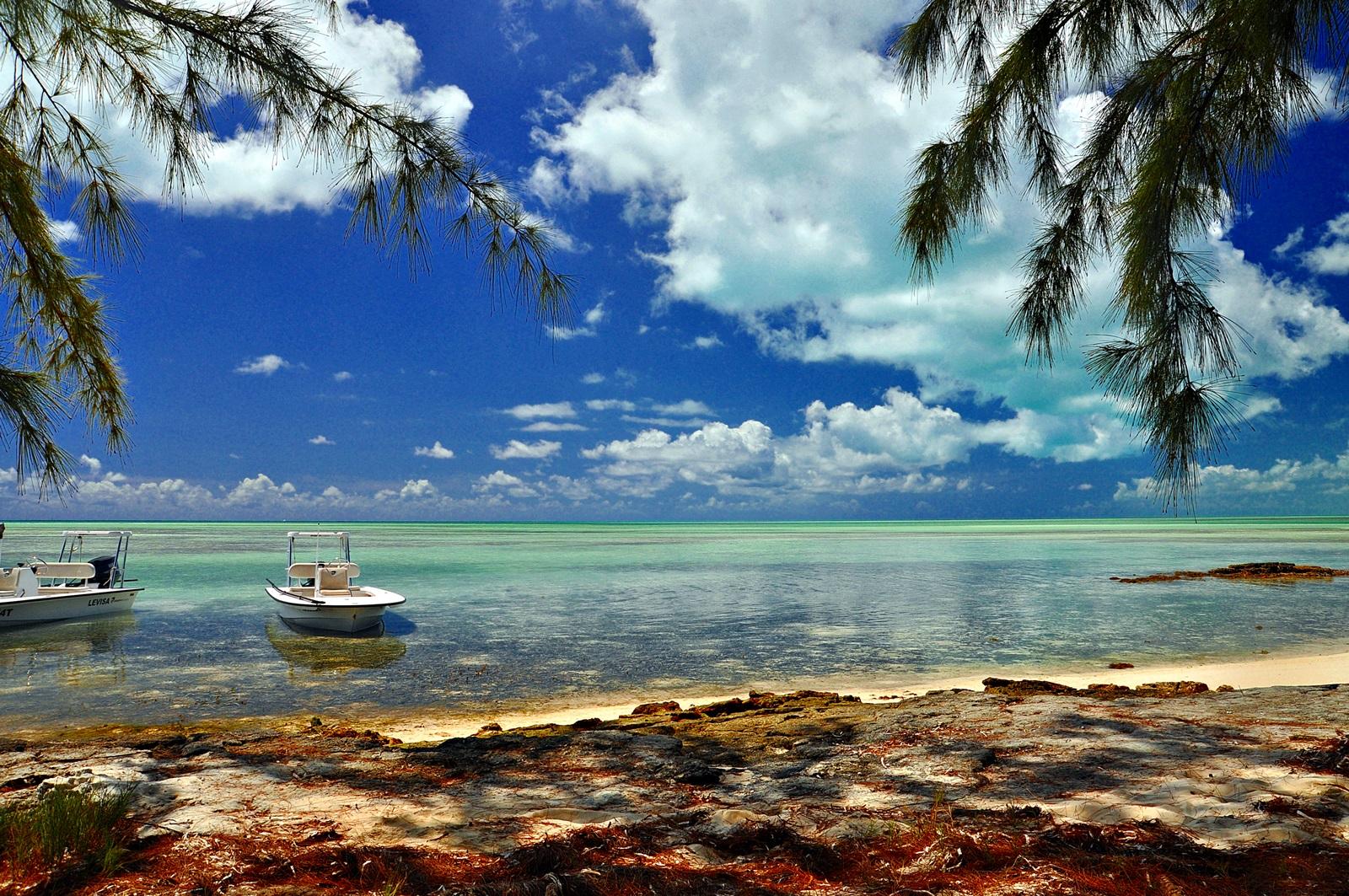 selv lunchen mellom fiskeøktene er som i paradis