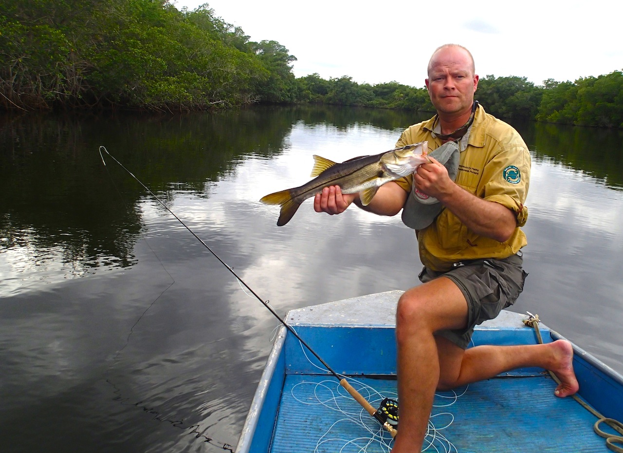 Snooken kan bli ganske mye større enn det her og er en sterk fisk