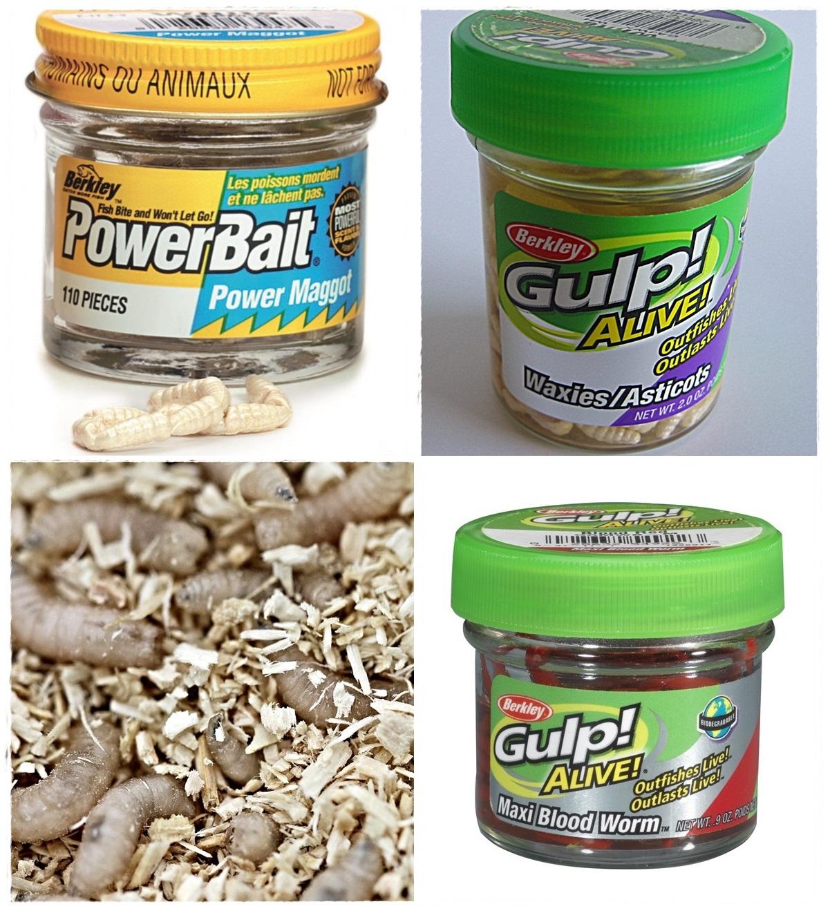 Gulp og Powerbait er kunstig agn med ekstra mye lukt fungerer godt enten alene eller sammen med maggot