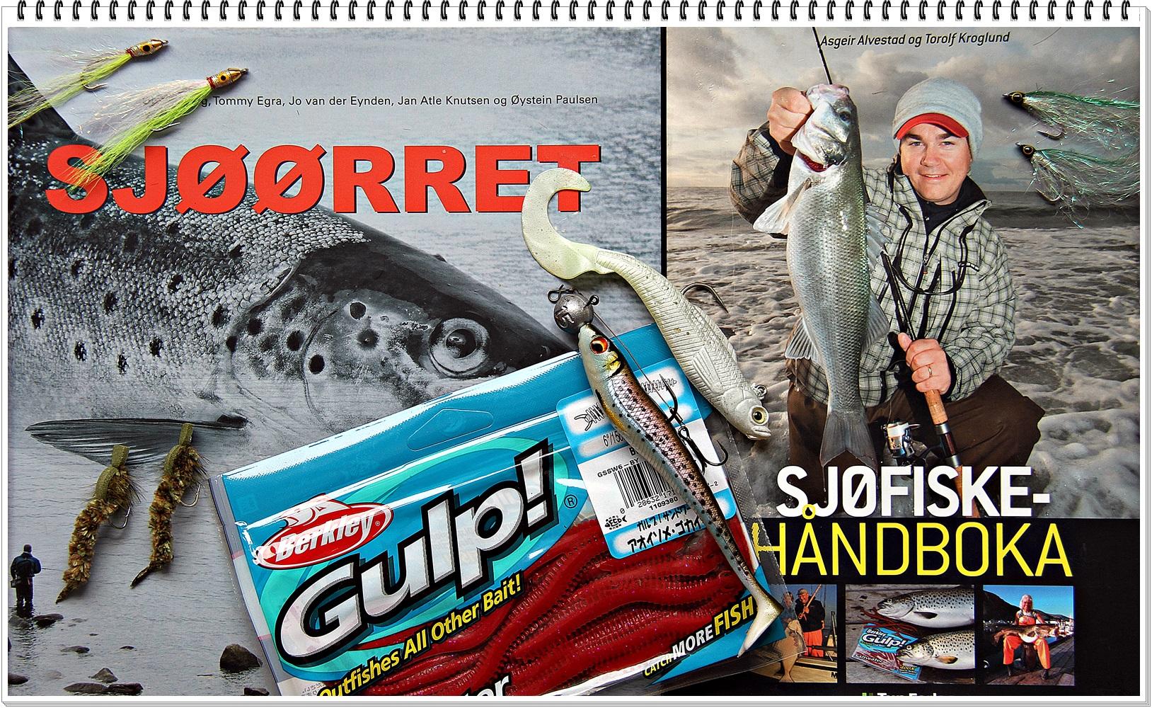 Les deg opp, men aller mest lær deg flere metoder å fiske sjøørret på