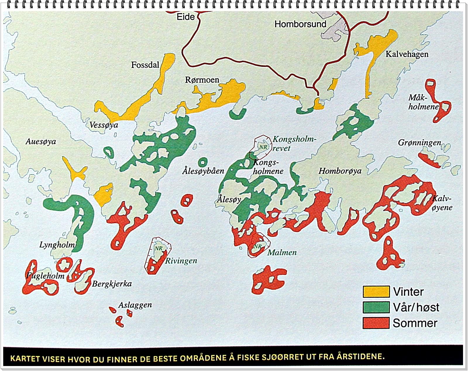 Gult=Vinterplasser Grønt=vår/høst Rødt=Sommerplasser Kart hentet i fra Sjøfiskehåndboka
