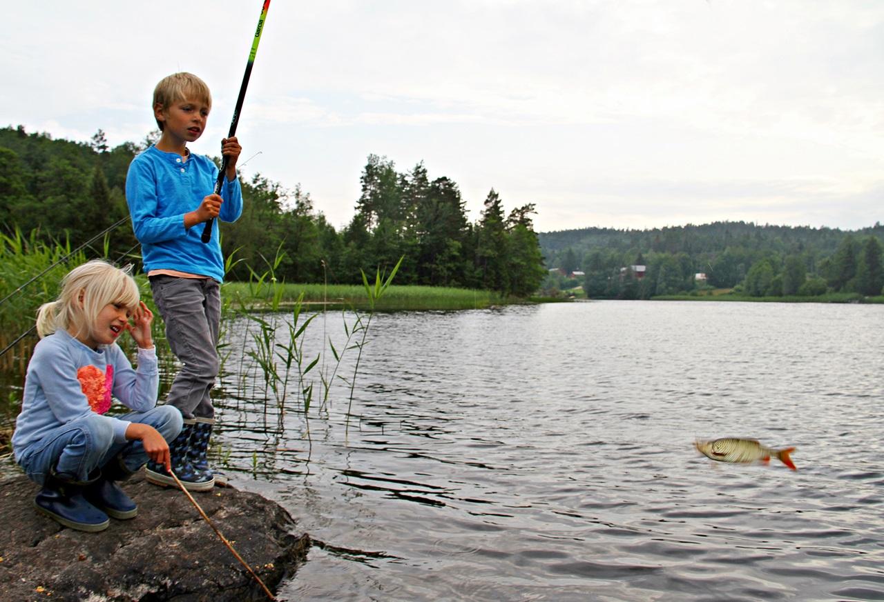 enkelt utstyr og enkel fisk å fange