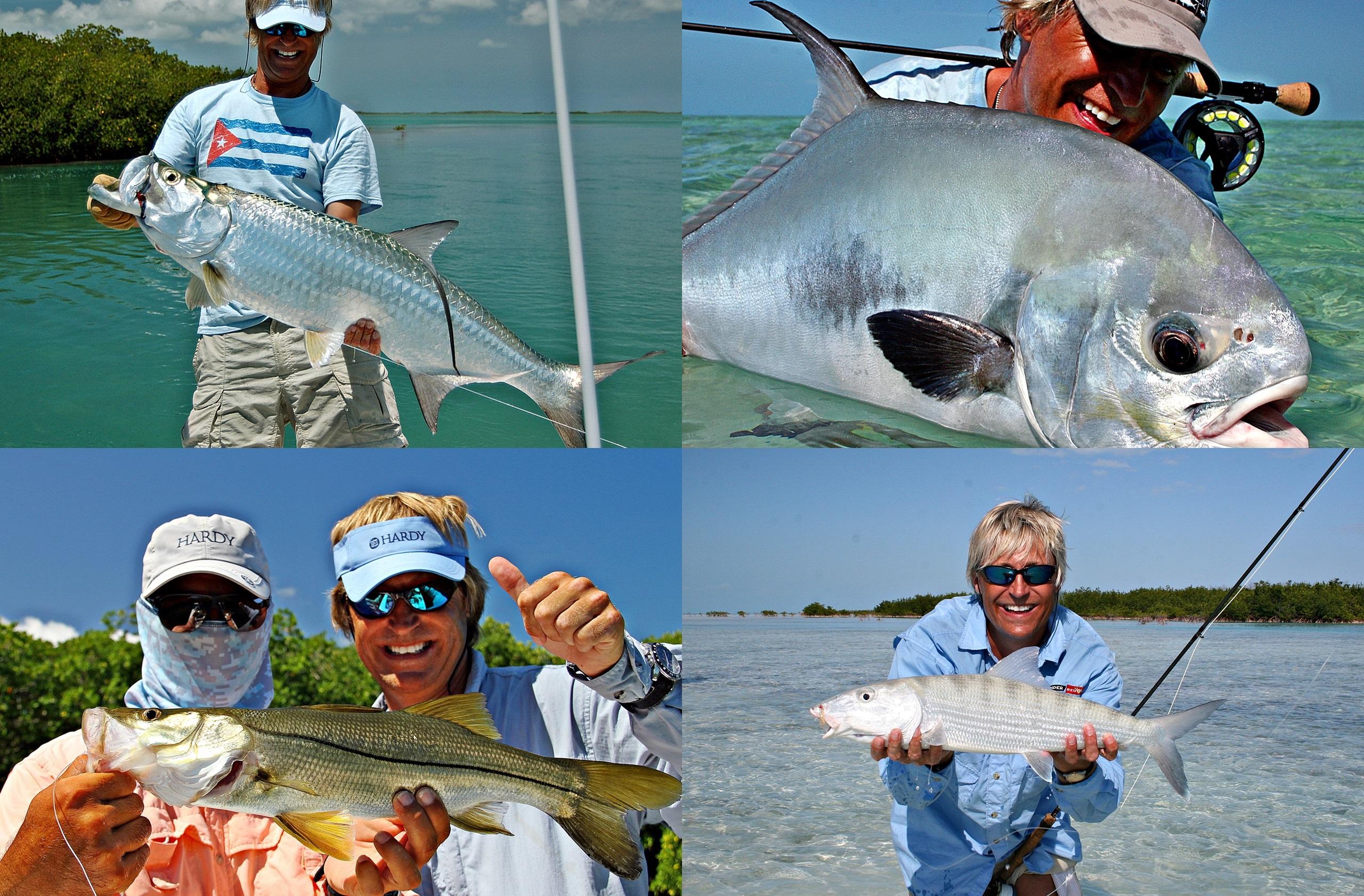 De 4 fiskene som inngår i en super grand slam. ov tarpon-permit-snook og bonefish