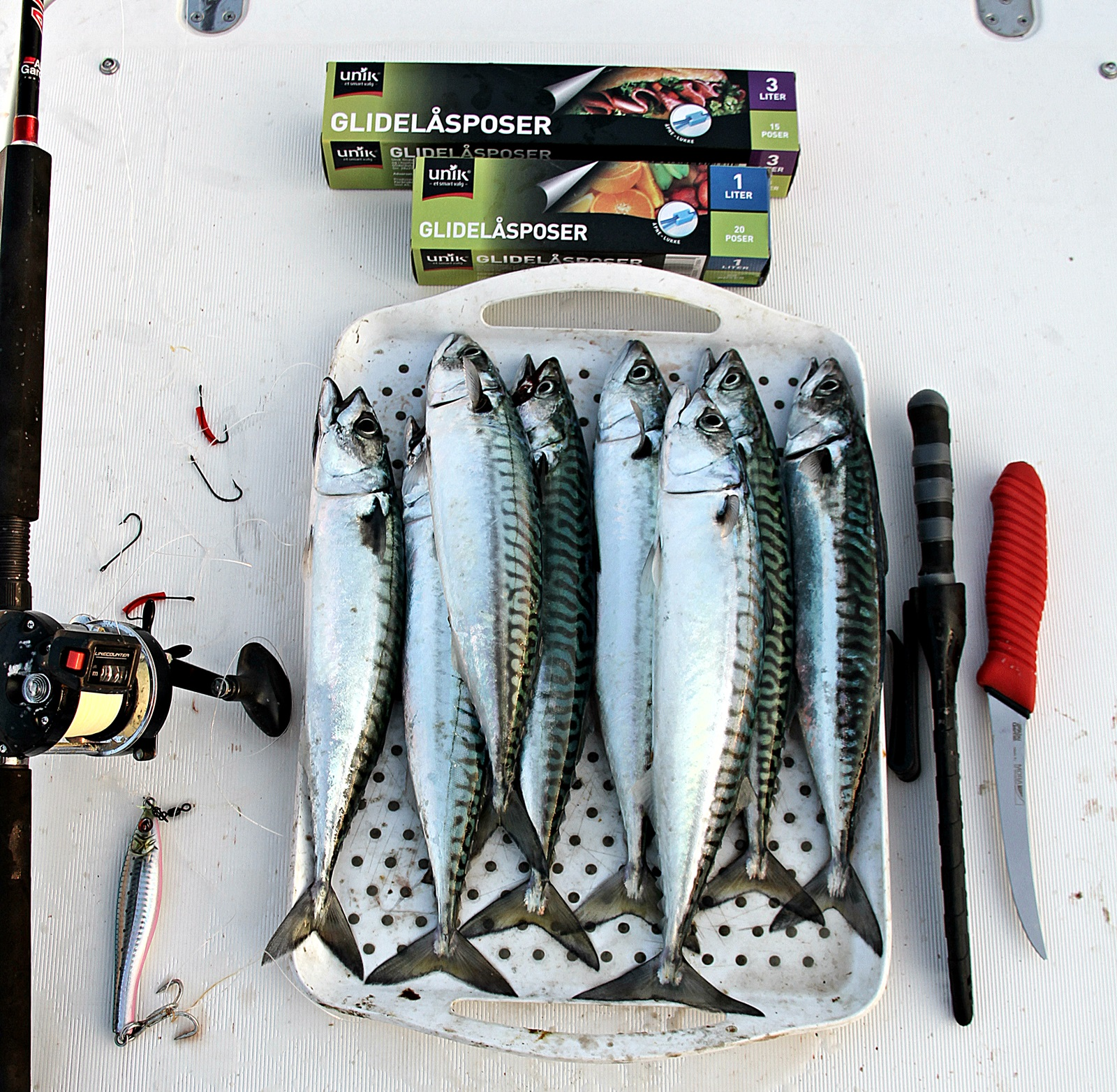 Dette trenger du for å fiske og lagre makrell