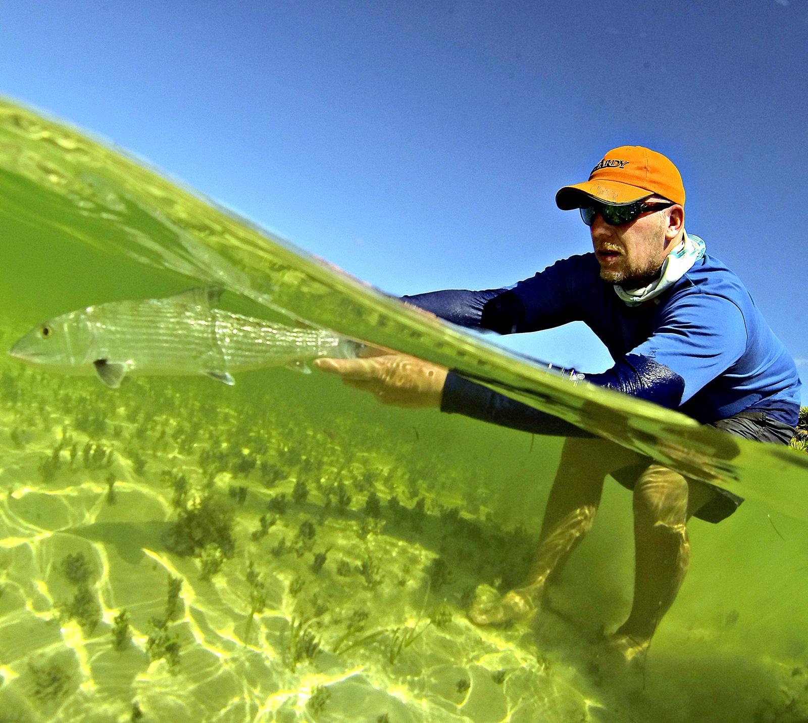 For første gang hadde jeg med en såkalt gopro done slik at jeg kunne ta bilder over og under vann sammtidig