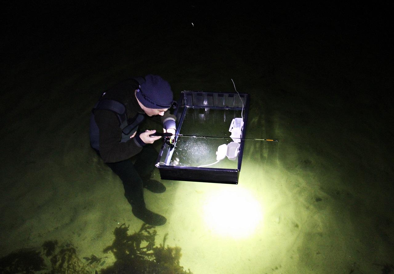 om natten ble det fiske i fra vannkikkebrett