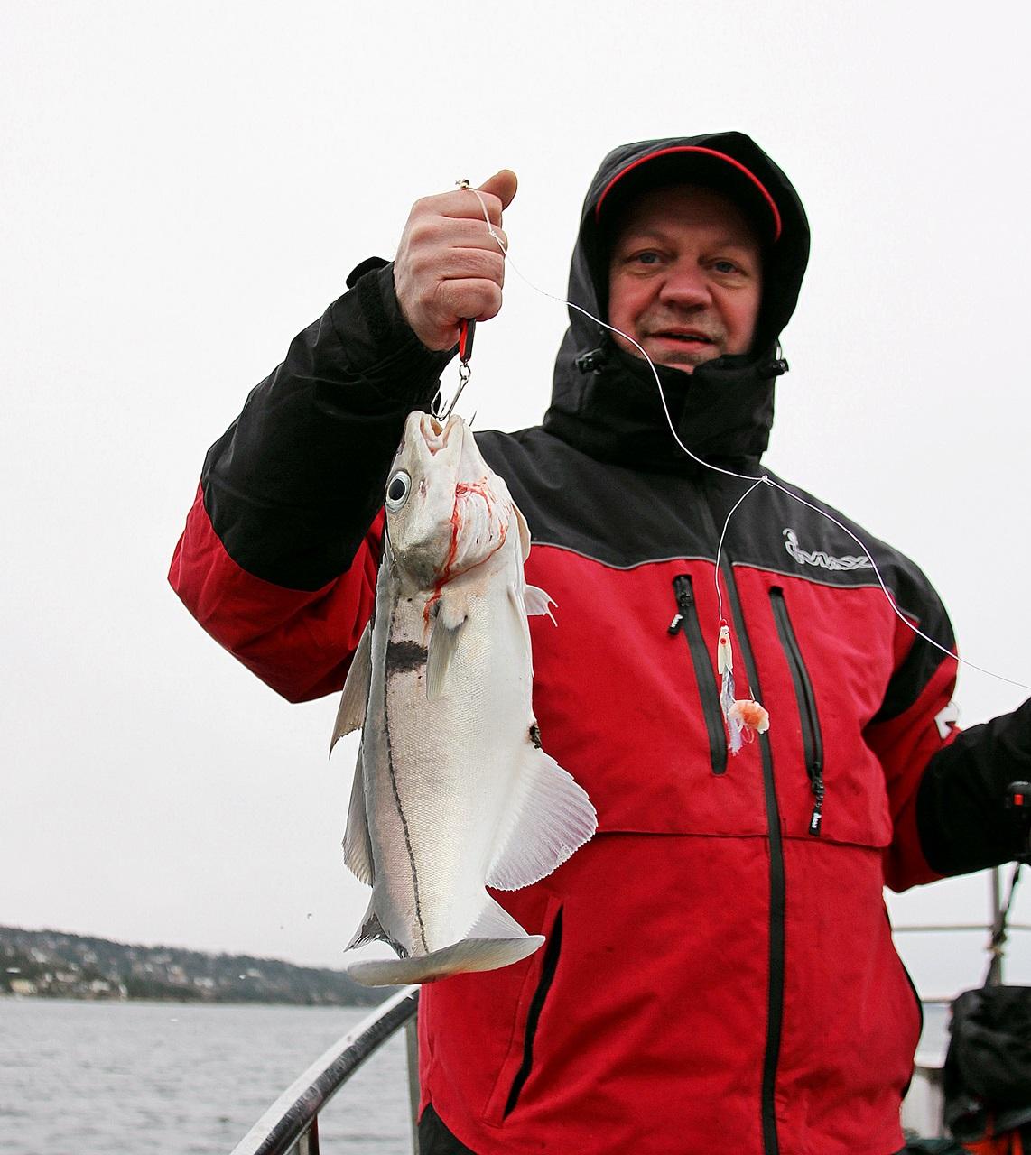 Båtfiske gav mange arter, her en hyse/kolje