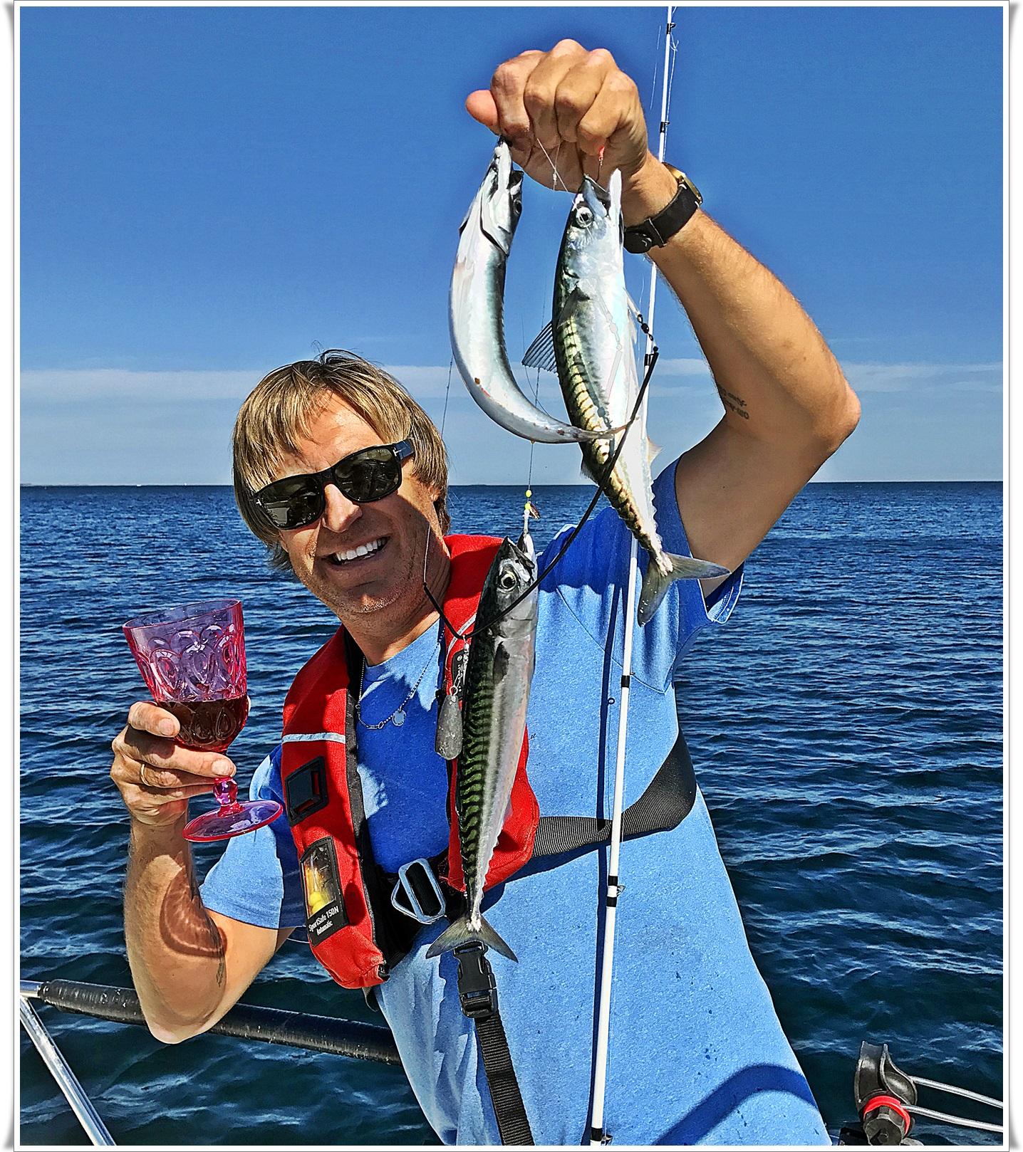 makrellen har for alvor inntatt sjøen