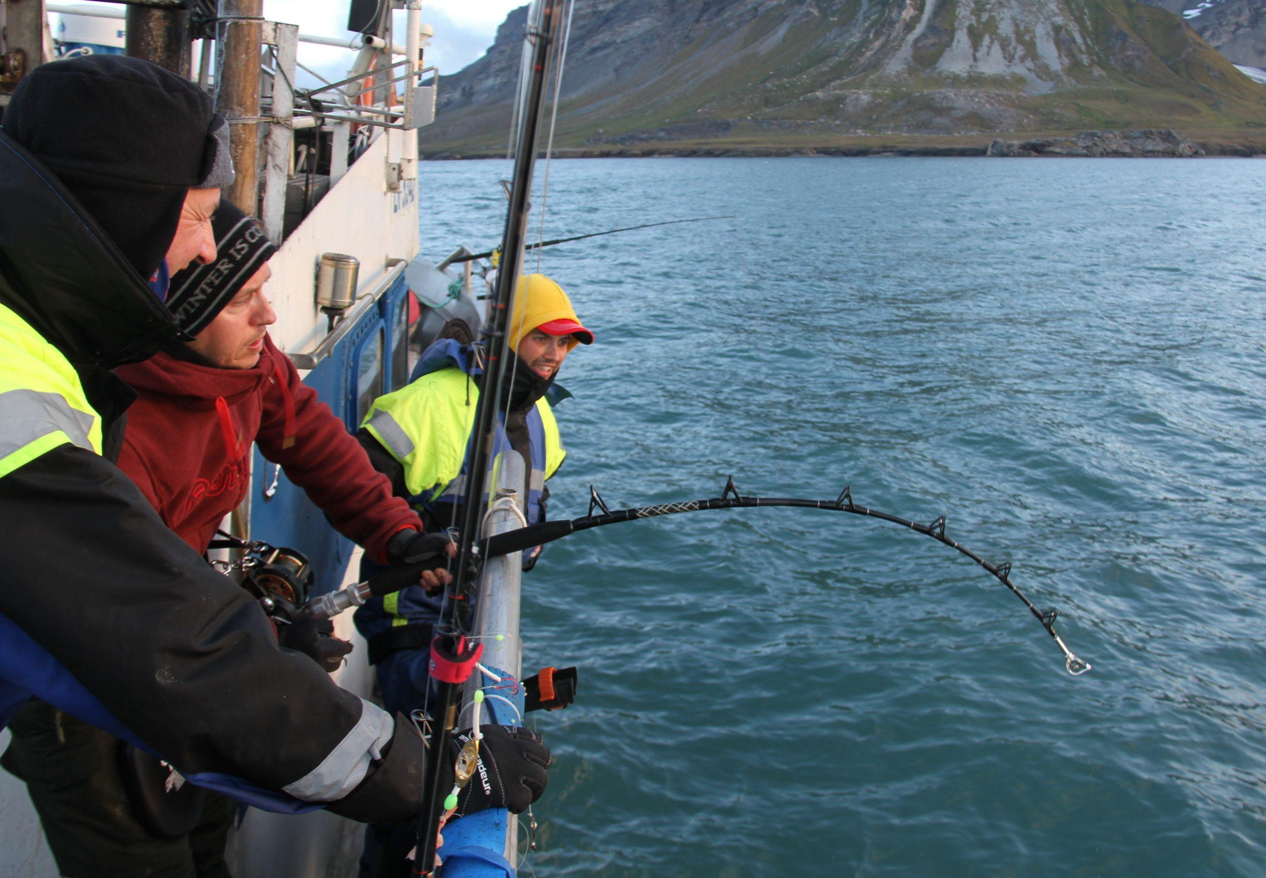 Sverre strammer opp og kjenner tyngden av den store fisken