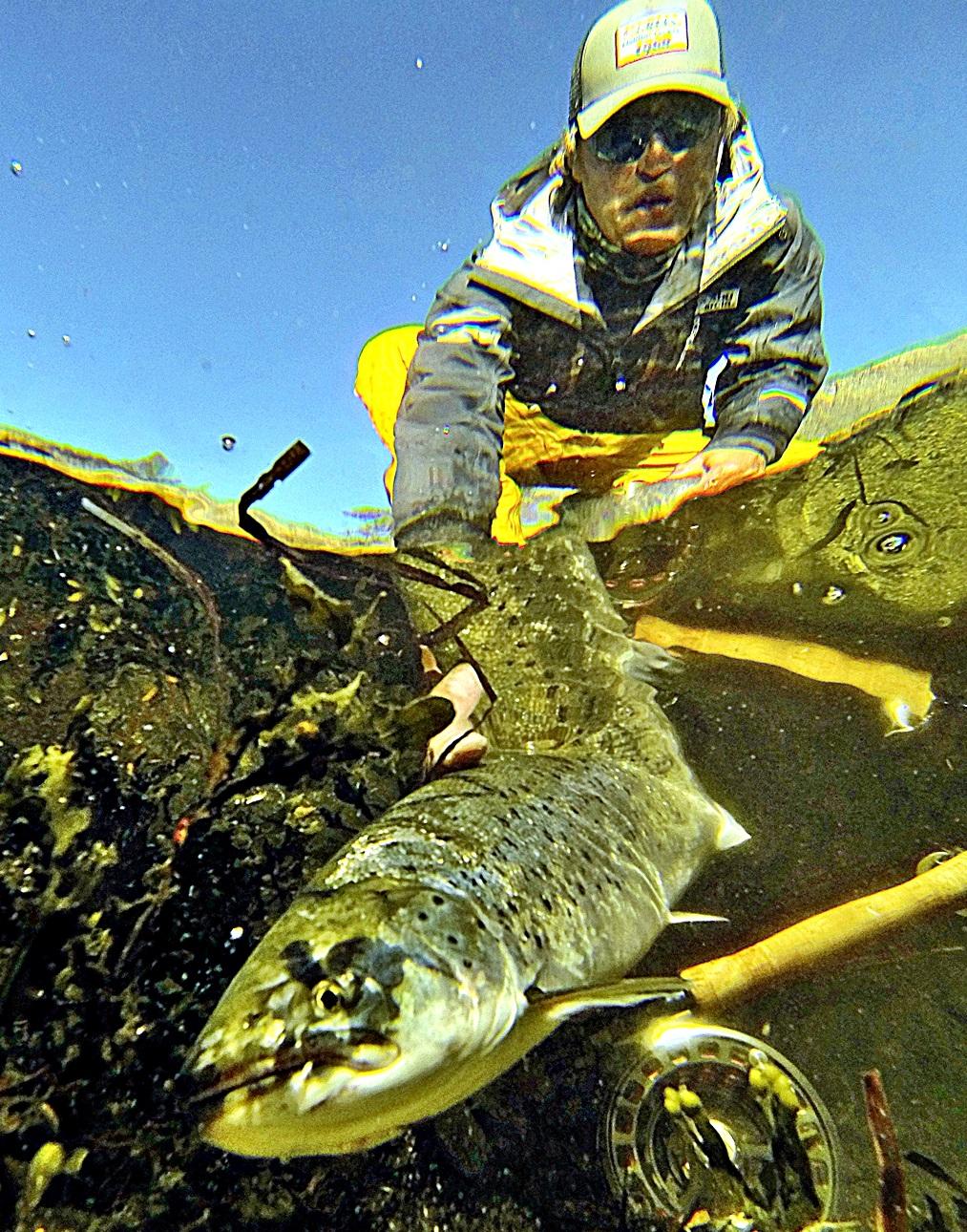 Sett tilbake all fisk du ikke trenger selv, uansett årstid
