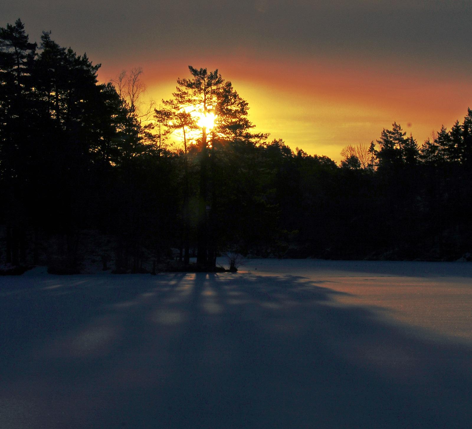 solnedgang på isen