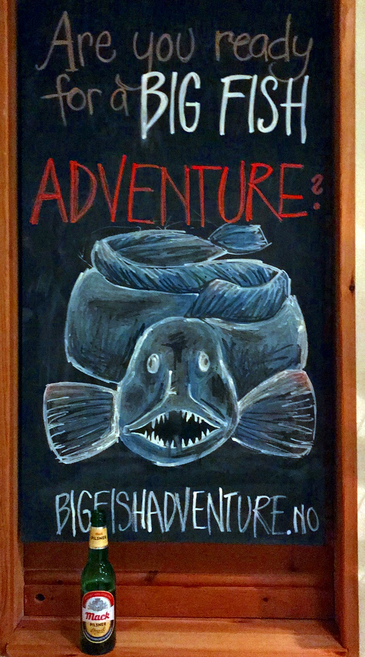 Innlosjeringen var som vanlig topp hos Bigfishadventure