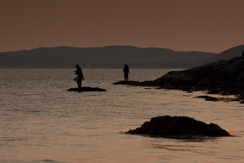 Skjerstadfjorden 01